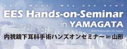 yamagata-2012-4.png